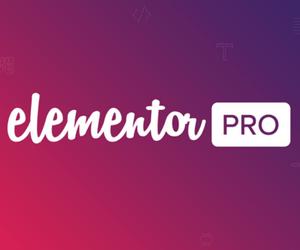 elementor pro best page builder