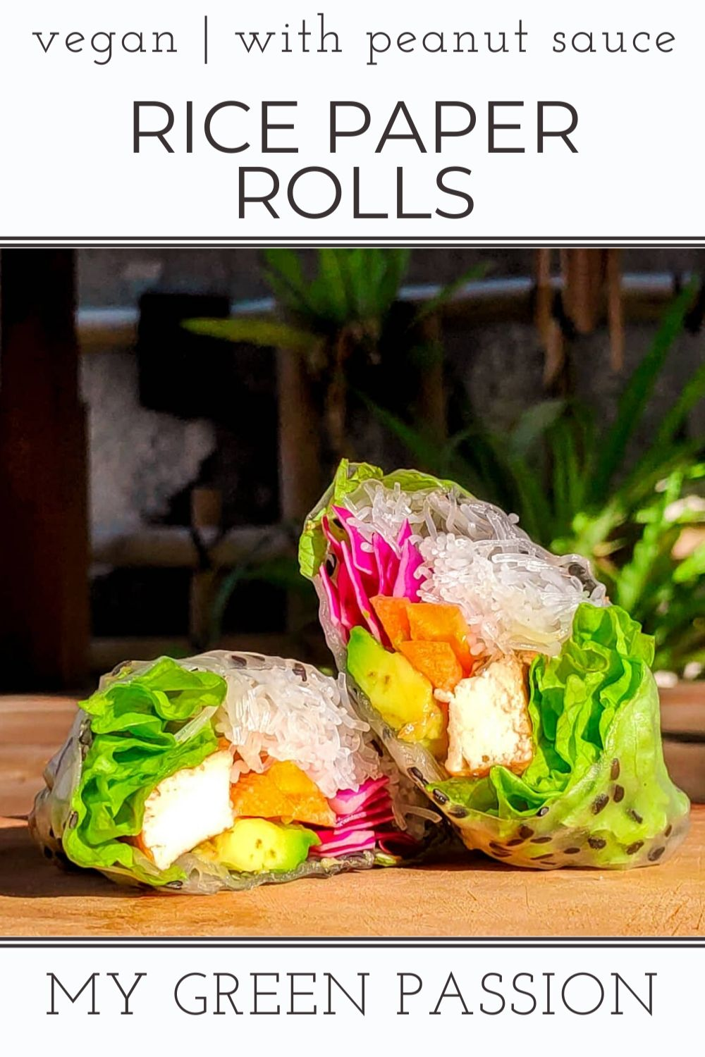 vegan summer rolls rainbow rice paper vegan with peanut sauce plant-based