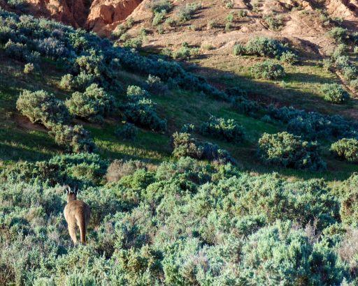Red Banks National Park